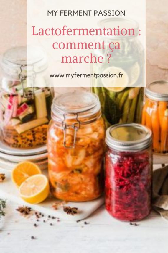 lactofermentation fermentation aliments fermentés