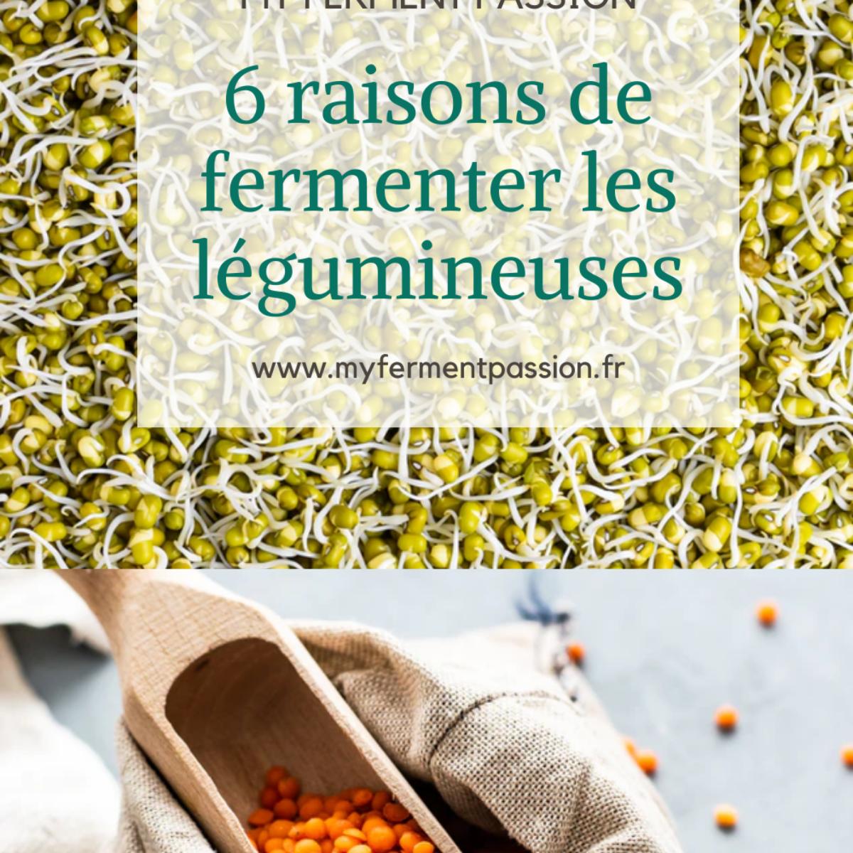 légumineuses fermentation