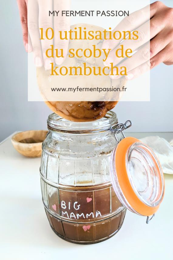 kombucha scoby fermentation boisson