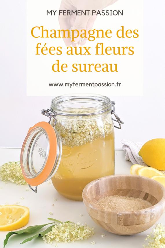 sureau boisson fermentée lactofermentation limonade citron sucre