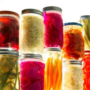 My ferment passion